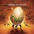 Cirque-300x225