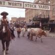 fort-worth-stockyards-01