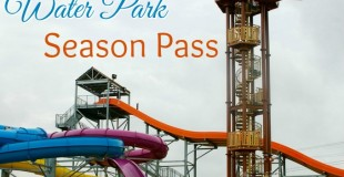 7 Reasons to own a Water Park Season Pass