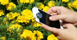 Capturing the Tiny Details with olloclip – iPhone Photography