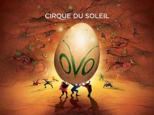 Cirque Du Soleil – OVO
