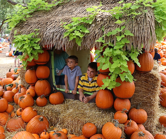 kids in pumpkin hut