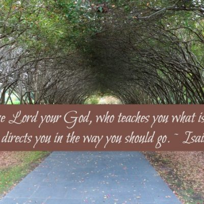 10 Scriptures to Help You Understand God's Plan for Your Life