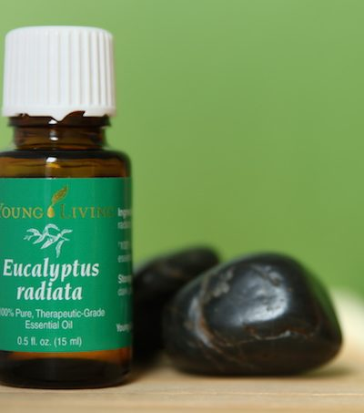 10 Uses for Eucalyptus Essential Oil
