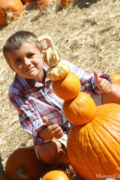 Enjoy the Fall with Your Family + Free Printable Fall Bucket List