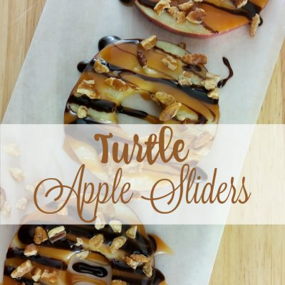 Turtle Apple Sliders
