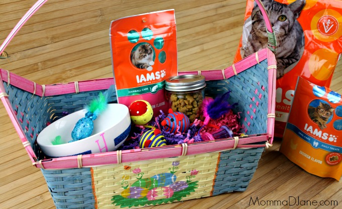 Easter Basket for Your Cat