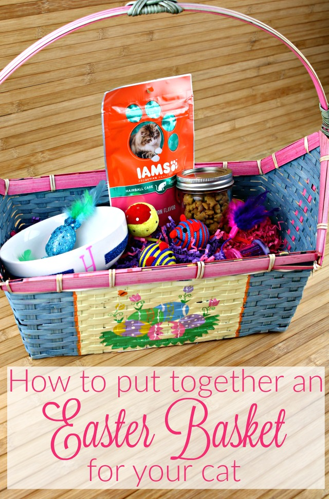 How to put together an Easter basket for your cat