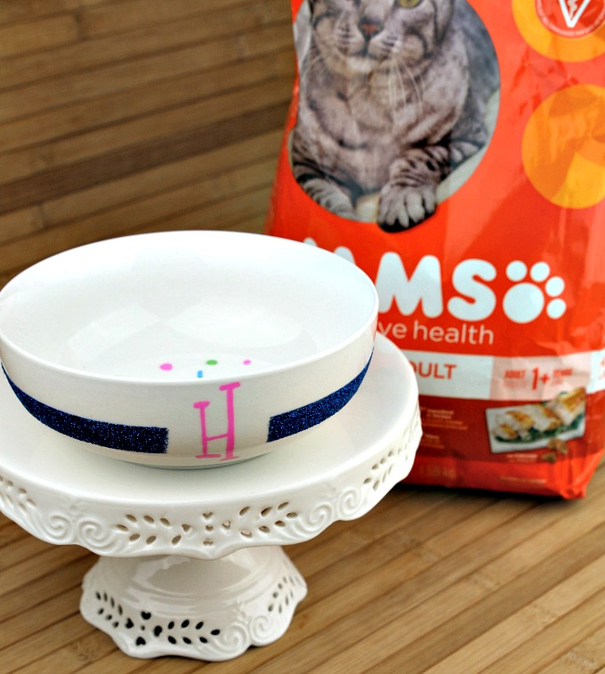 cat food bowl with IAMS