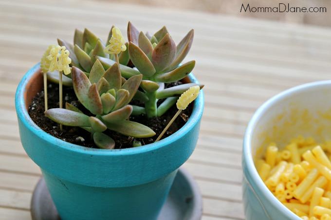 nature pot