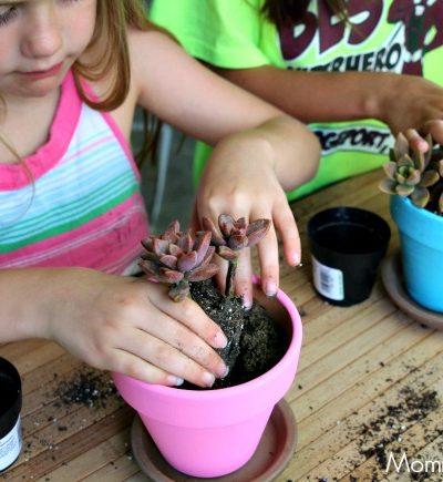 Easy Ways to Create a Child-Friendly Garden