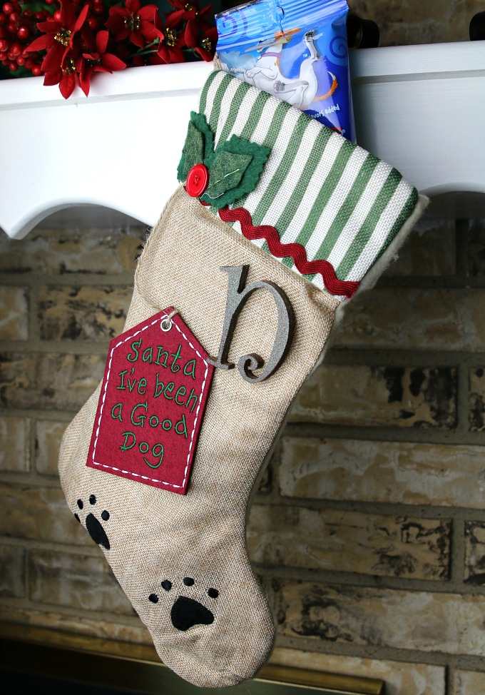 personalized-christmas-stocking-for-dog