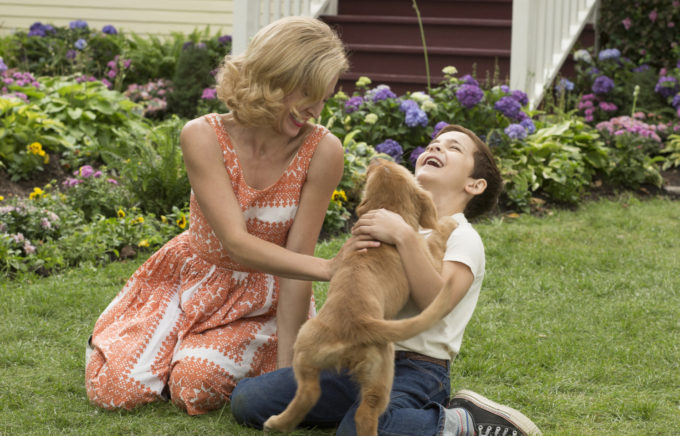 A Dog's Purpose Movie Giveaway - Life  Family  Joy