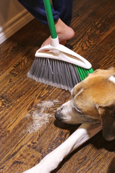 Make Sweeping Hardwood Floors a Breeze – Eye-Vac Review