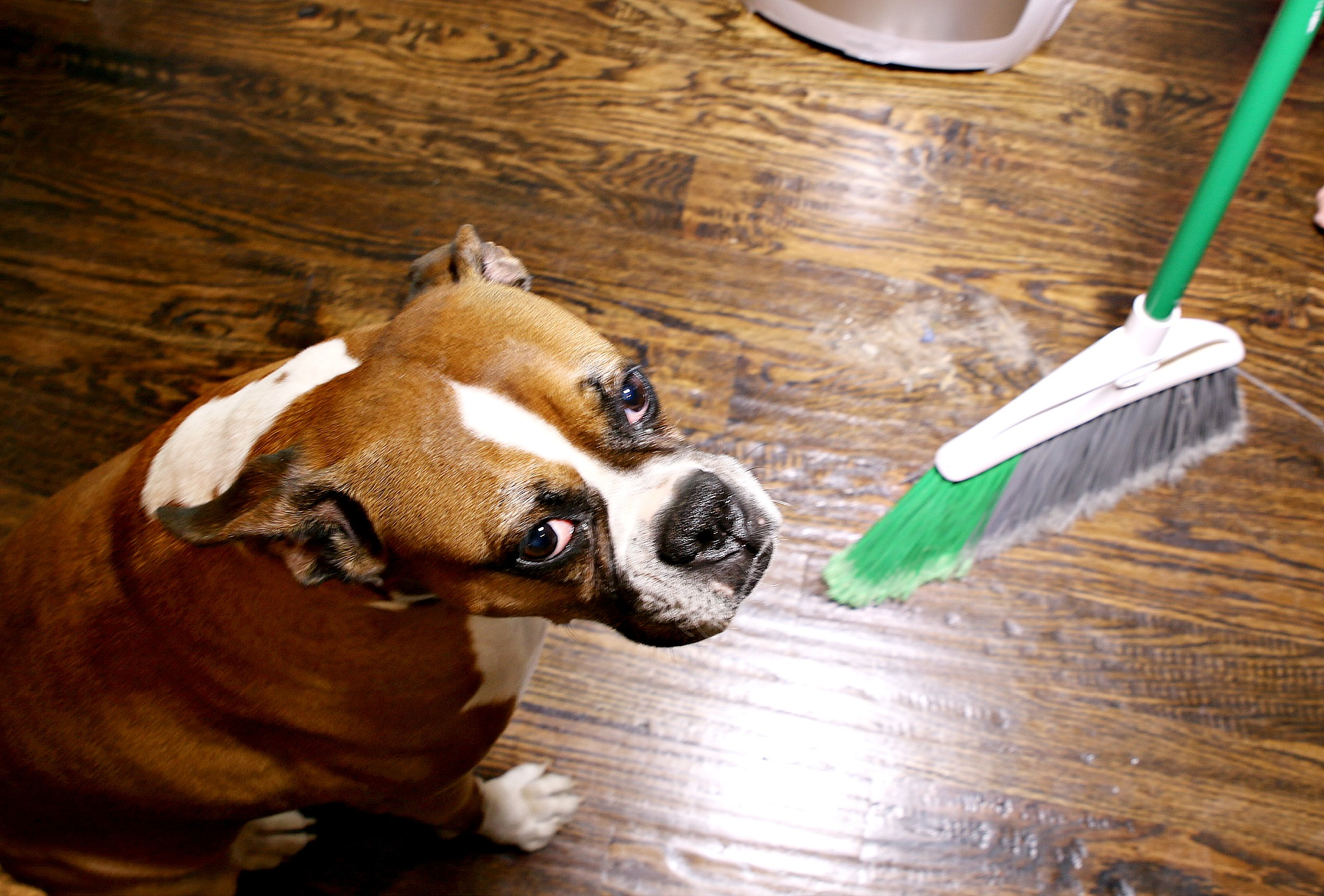 Make Sweeping Hardwood Floors a Breeze - Eye-Vac Review