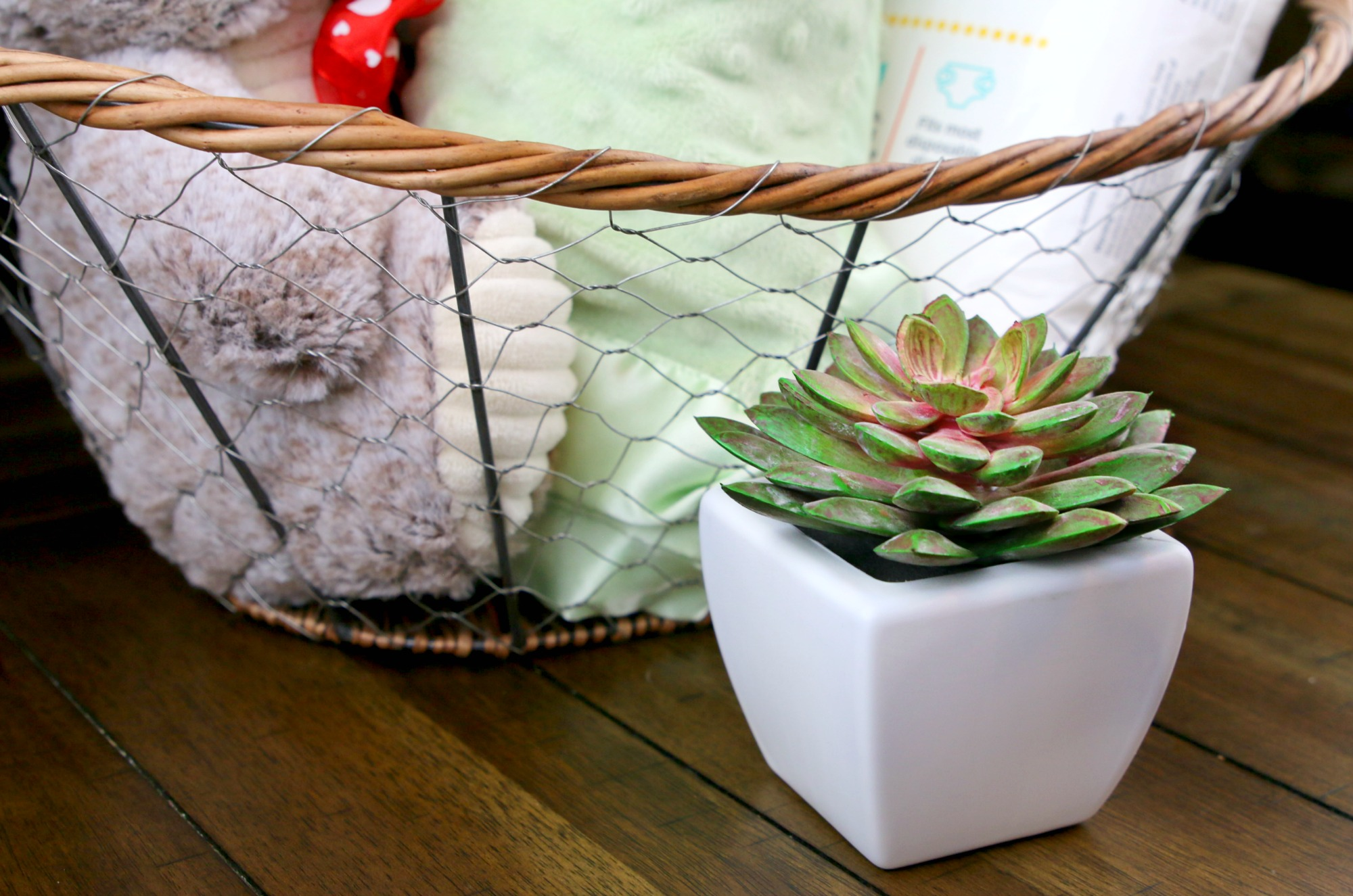 add succulent to new mom gift basket
