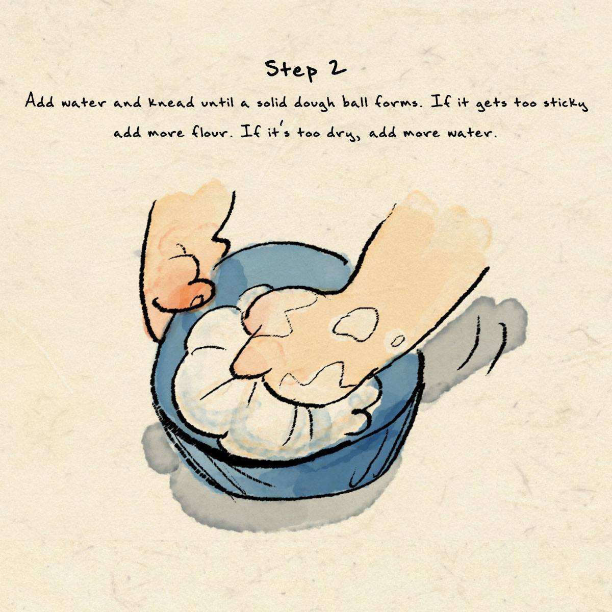 Step 2 in Dumpling Recipe