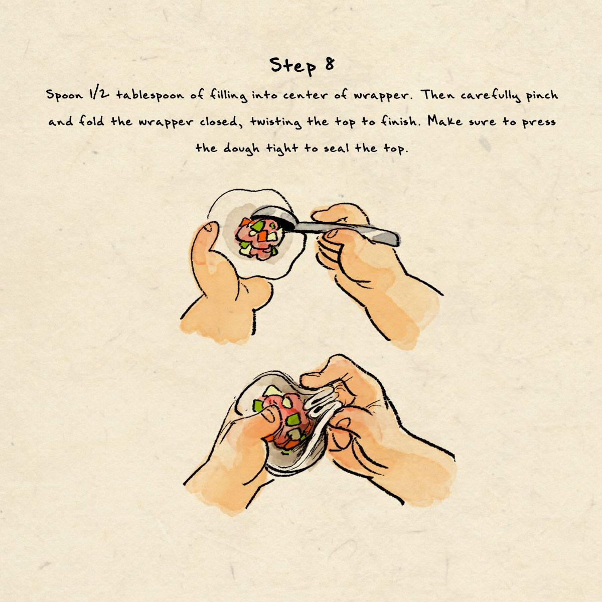 step 8 dumpling recipe