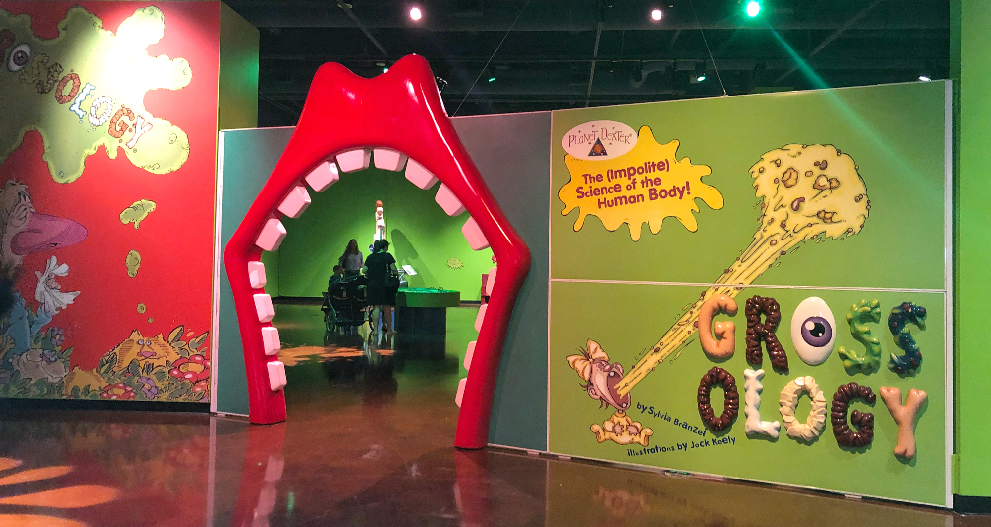 Human Grossology exhibit at Fort Worth Museum