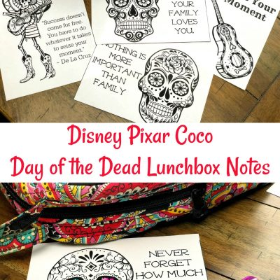 Disney Pixar Coco Inspired Day of the Dead Lunchbox Notes