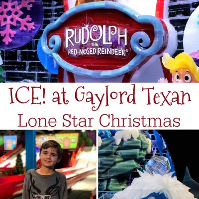 Tips for Making Your Visit to ICE! at Gaylord Texan Magical