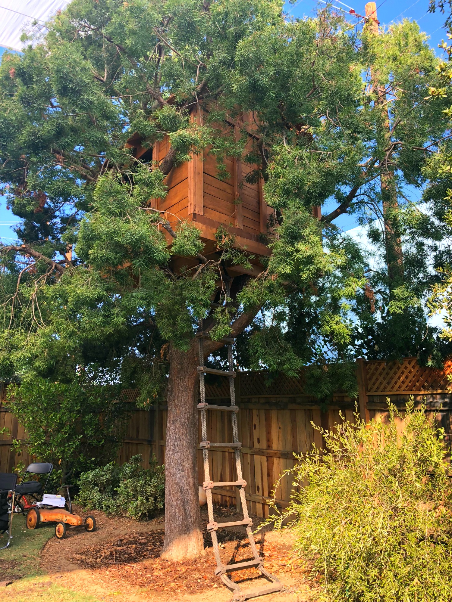The Cleary's treehouse