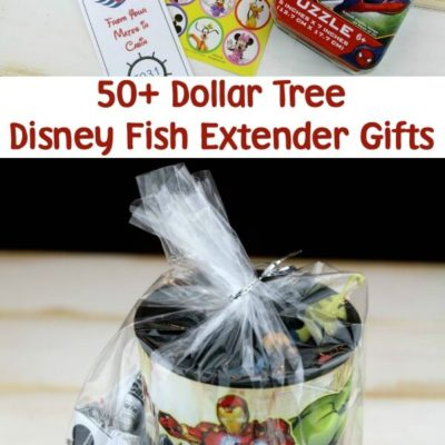 Disney Cruise Fish Extender Gift Ideas at Dollar Tree