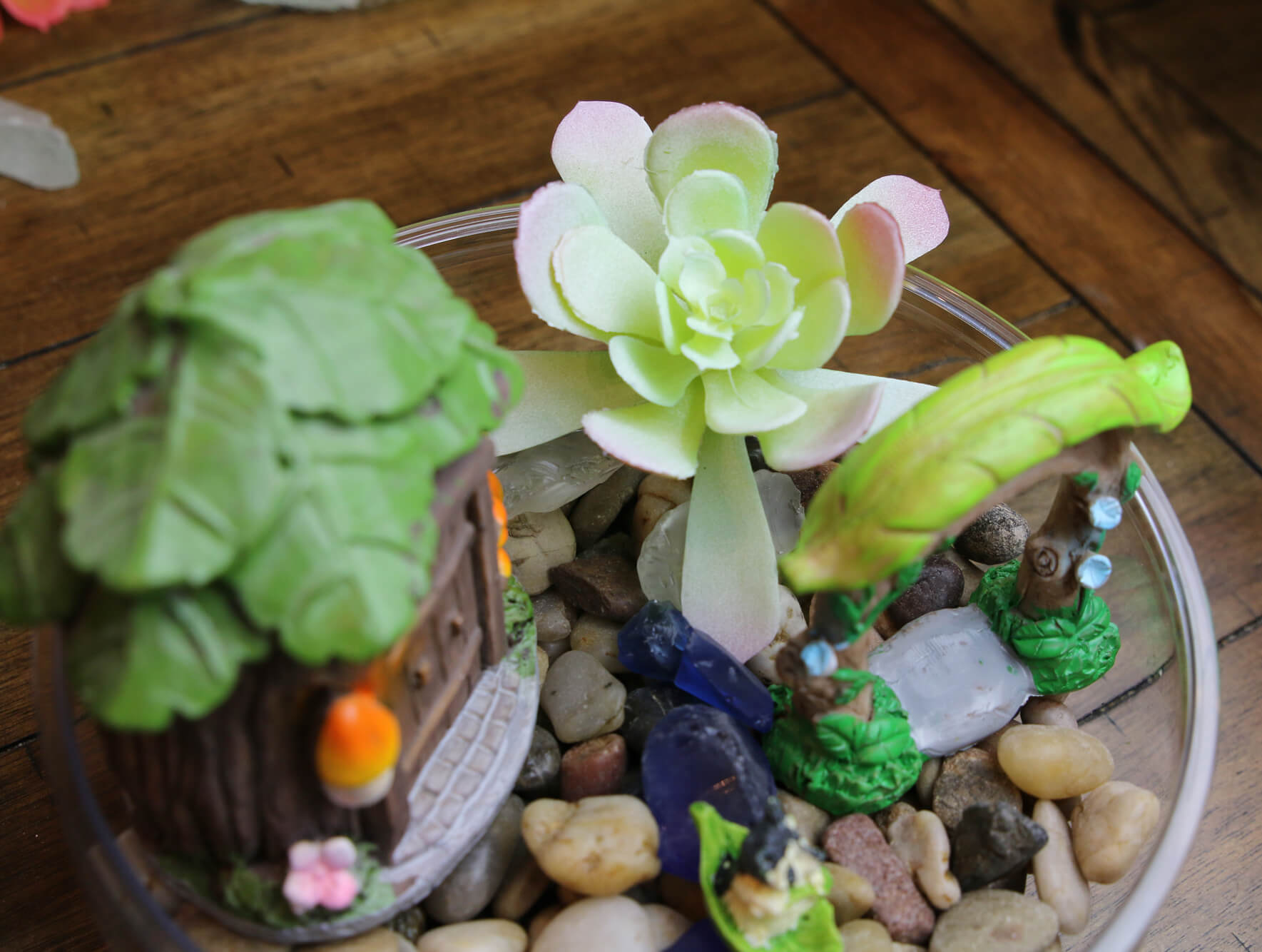 add succulent to fairy garden