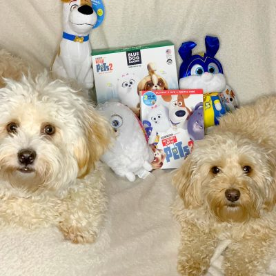 Host a Movie Night with The Secret Life of Pets 2